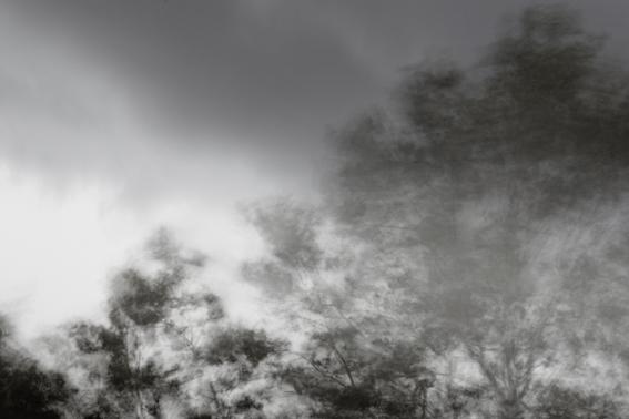 'Wind'